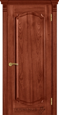 Двері Термінус модель 43 Caro (Оригін)