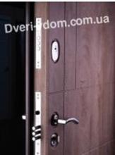 «Неаполь-2»RAL 8019 уличные двери